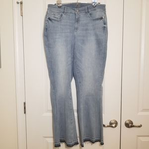 NWOT Anthropologie 16W Flare Jeans